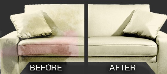 Biodegradable couch cleaning