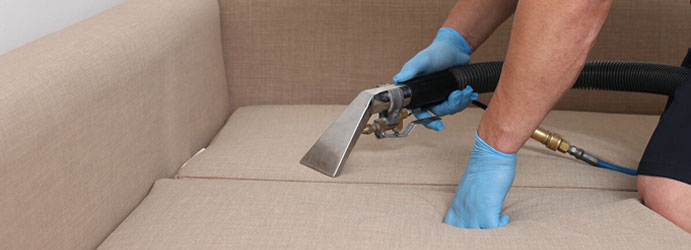 Couch Cleaning Pheasants Nest