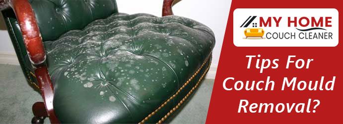 Couch Mould Removal